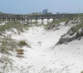 Sand dunes at Ponce Inlet Florida